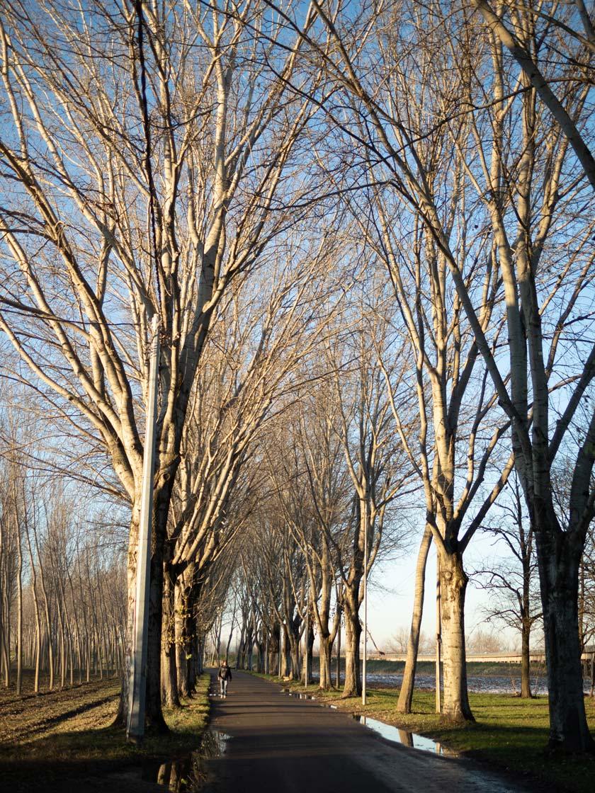 Strada accesso Locanda Bortolino inverno